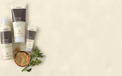 5 Reasons You Should Use Aveda Products